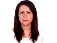 Nasibeh Saffari Gunnebo Cash Management