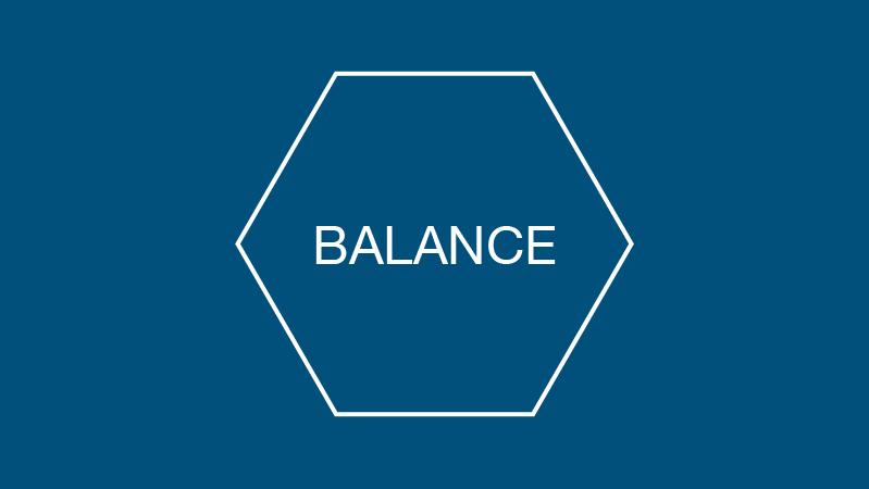 programvarumodul BALANCE för ekonomi